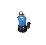 Pump, Water Submersible 2″